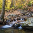Autumn creek and trees — Stock Photo #27046261