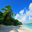 Постер, плакат: Virgin Islands Beach