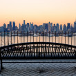 New York City — Stock Photo #27650223
