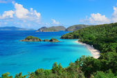Virgin Islands Beach — Stock Photo