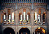 London Natural History museum — Stock Photo