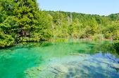 Plitvice Lakes National Park, Croatia — Stock Photo