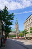 The city hall of Hamburg — Stock Photo