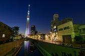 Tokyo Sky Tree at dusk — Stock Photo