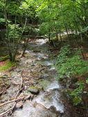 Nishizawy údolí v yamanashi, japonsko — Stock fotografie