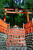 Fushimi Inari Taisha in Kyoto, Japan — Stock Photo