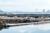 Log boom on Okanagan Lake — Stock Photo