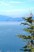 Okanagan Lake and Surrounding hills — Stock Photo