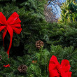 Christmas Wreath — Stock Photo #37678183