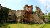 Leeftijd kasteel, het platform gebouw in het westelijke deel van oekraïne — Stockfoto