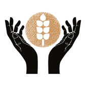 Hands with wheat vector symbol. — Stock Vector
