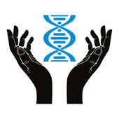 Hands holding DNA strand vector symbol. — Stock Vector