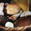 Wild edible mushrooms - Stock Photo