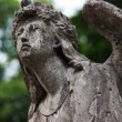 Figure Of  Angel - Stockfoto