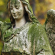 Figure Of Angel — Stock Photo #18938439