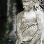 Figure Of Angel — Stock Photo #19146021