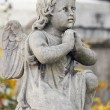 Figure Of Angel — Stock Photo #19301867