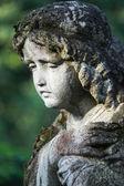 Abbildung eines betenden engels — Stockfoto