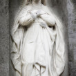 Statue Of Virgin Mary — Stock Photo #23941987