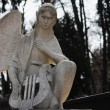 Figure Of Angel — Stock Photo #26102973