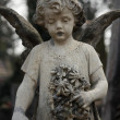 Angel on tomb — Stock Photo #31063319