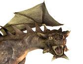 Roaring dragon head — Stock Photo
