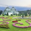 Palm house in Schonbrunn, Wien - Stock Photo