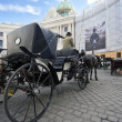 Vienna Carriage Tourist Ride — Stock Photo