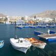 Fishing harbor of Los Cristianos. Canary Island Tenerife, Spain — Stock Photo