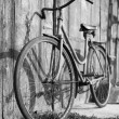 Vintage bicycle - Foto de Stock