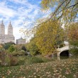 Stock Photo: Fall colors in Central Park New York City