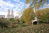 Fall colors in Central Park New York City — Stockfoto