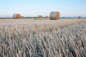 Straw bale hey stack — Foto de Stock