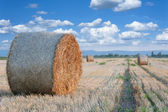 Straw bale hey stack — 图库照片