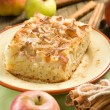 Stockfoto: Homemade apple pie with cinnamon