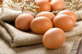 Eier — Stockfoto