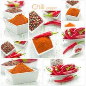 Chili — Stock Photo
