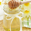 Stock Photo: Honey jar