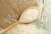 Rice spoon — Stock Photo