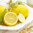 Lemon with linden — Stock Photo
