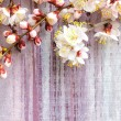 Spring blossoms over wooden background — Stock Photo #24905013