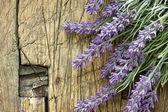 Lavender over vintage wood — Stock Photo