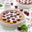 Cherry pie — Stock Photo #26504967