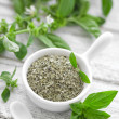 Fresh and dry basil — Stock Photo #28941437