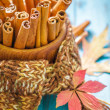 Cinnamon — Stock Photo #31395761