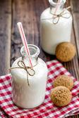 Fresh milk — Stock Photo