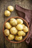 Potato — Stock Photo