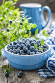 Blueberry — Stockfoto