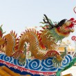 Golden Chinese Dragon — Stock Photo