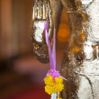 Stock Photo: Golden Buddhhand
